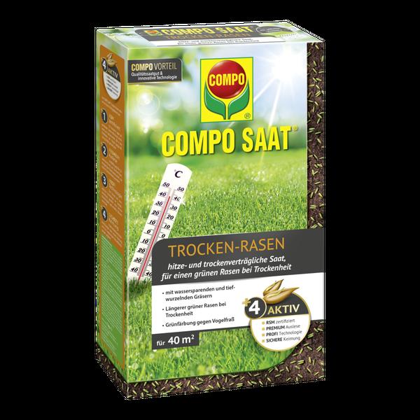 Substral Rasensamen Der Sonnige Saatgut 1,25 kg für 50 m²